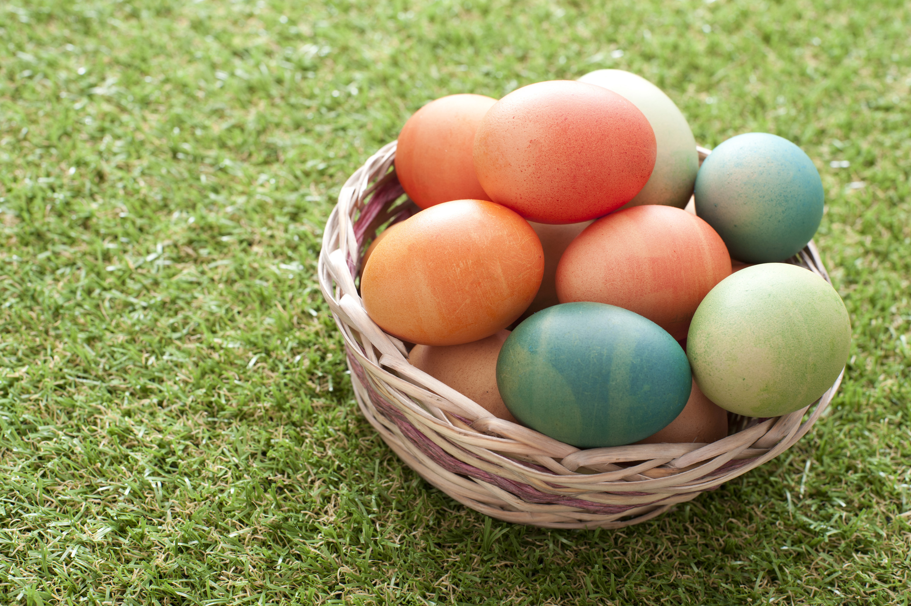 basket_of_coloured_eggs.jpg - Wicker basket of colorful dyed boiled homemade Easter eggs on green grass in spring ready for the kids egg hunt tradition