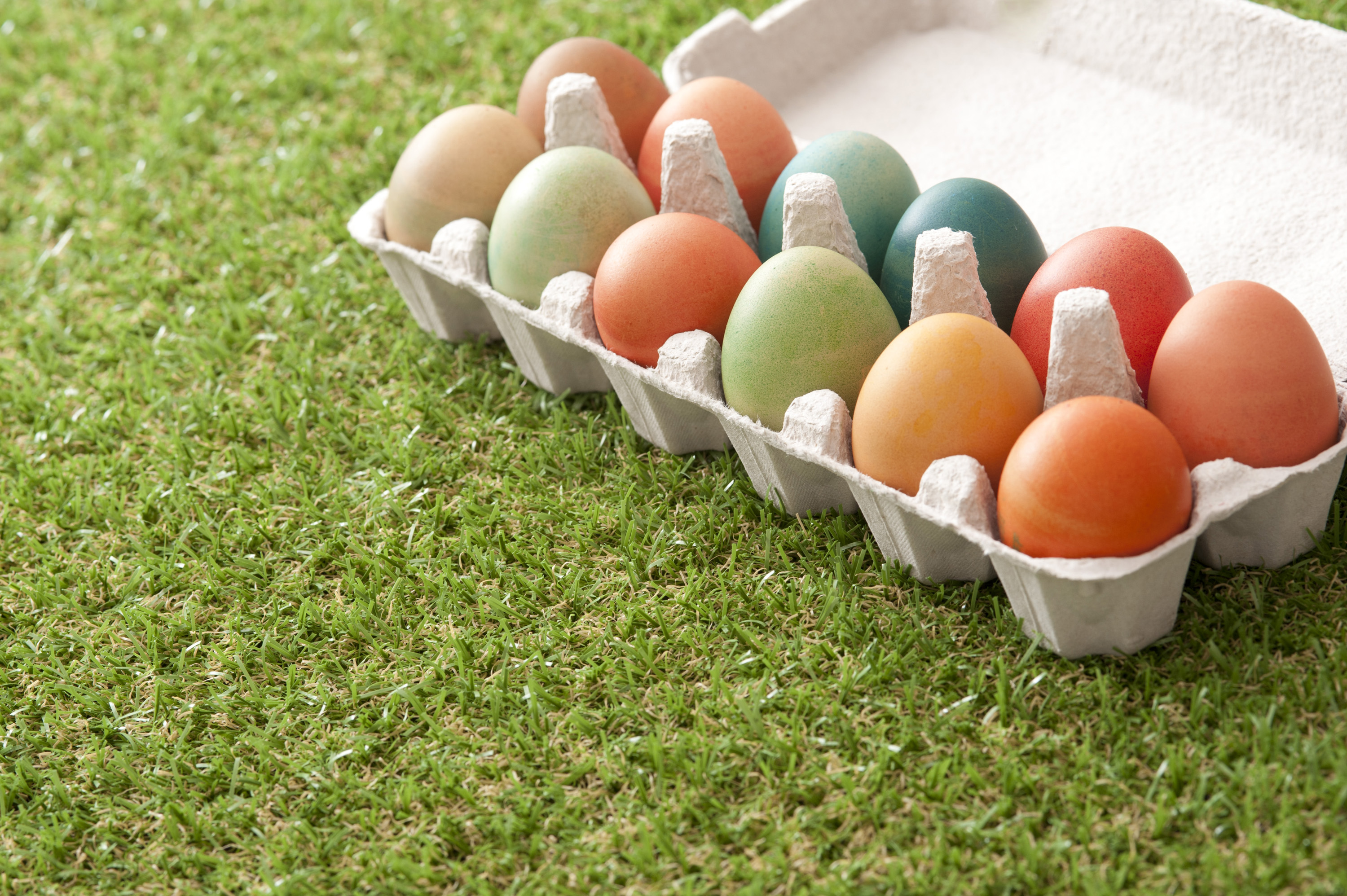coloured_eggs.jpg - Cardboard carton full of colorful dyed hard boiled Easter eggs on neat short green spring grass with copy space for your greeting