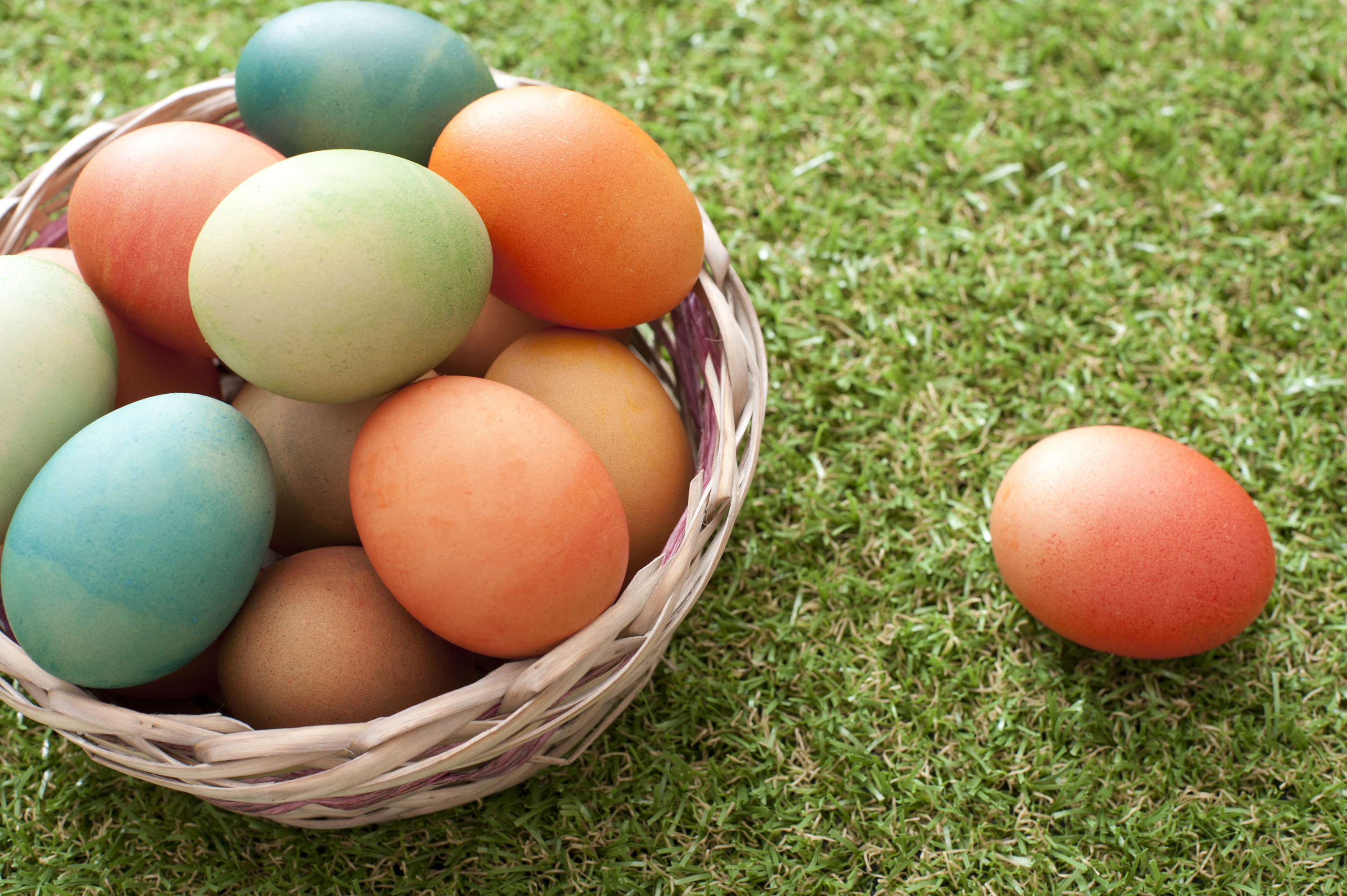 colourful_basket_of_eggs.jpg - Wicker basket filled with colorful dyed boiled Easter eggs on neat green grass with a single egg alongside and copy space