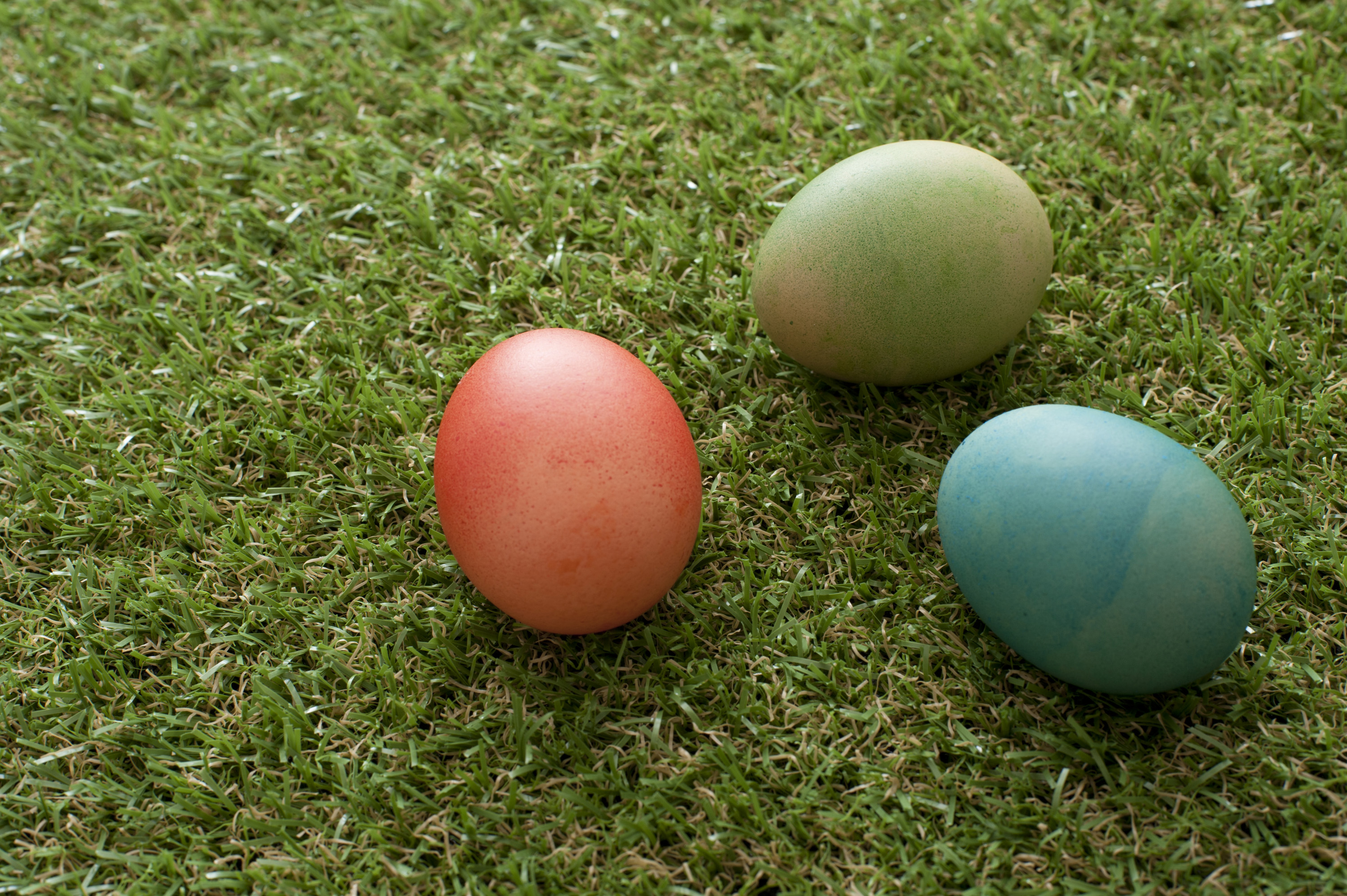 easter_coloured_eggs.jpg - Three colorful dyed Easter eggs on short neat spring grass with copy space in a festive background to celebrate the holiday