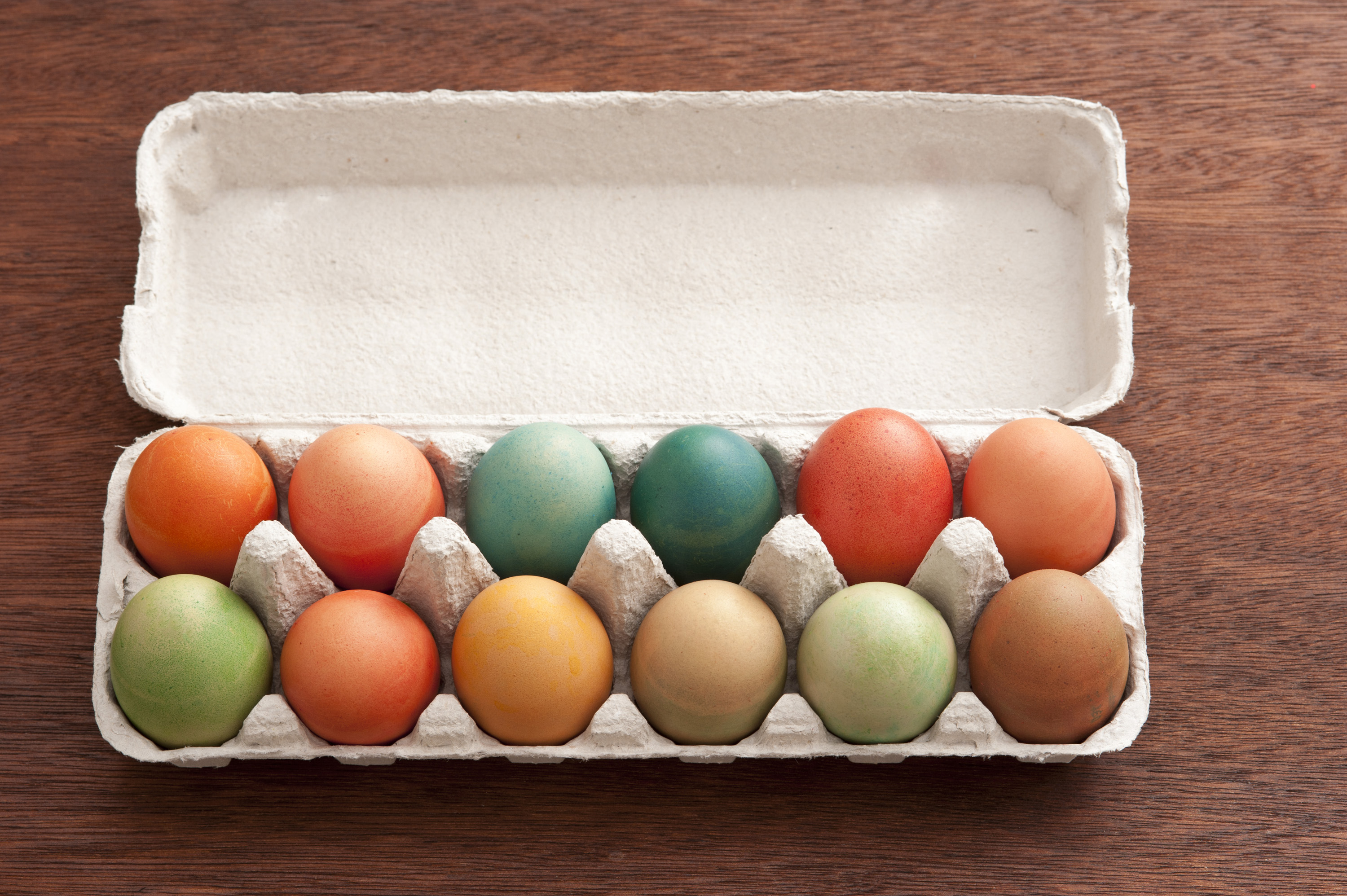 easter_egg_box.jpg - Top down view of dyed eggs in paper carton with blank underside of lid for Easter holiday theme