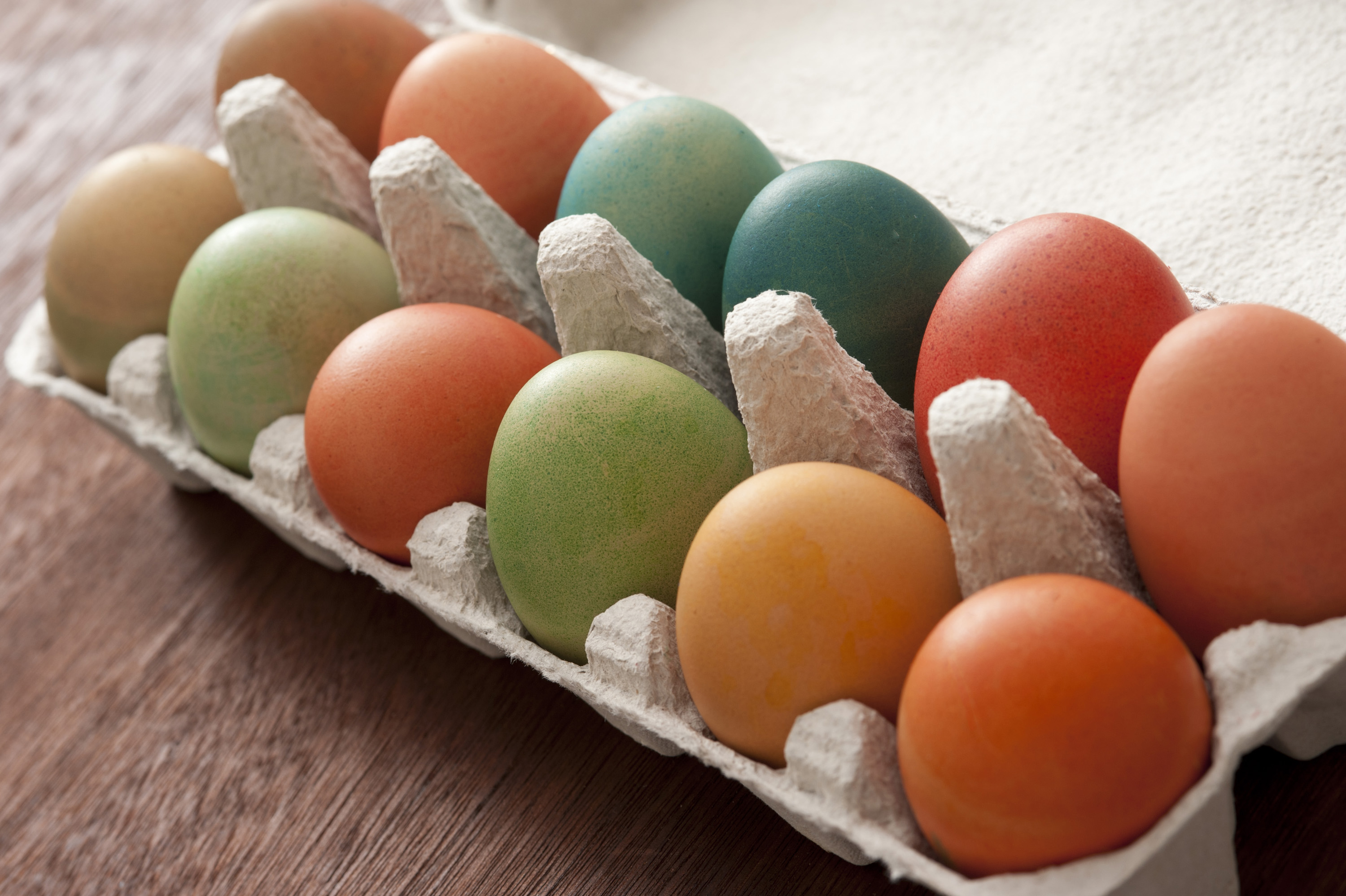 easter_hunt_eggs.jpg - Cardboard carton full of multicolored home dyed boiled Easter eggs for a healthy holiday celebration in a close up view
