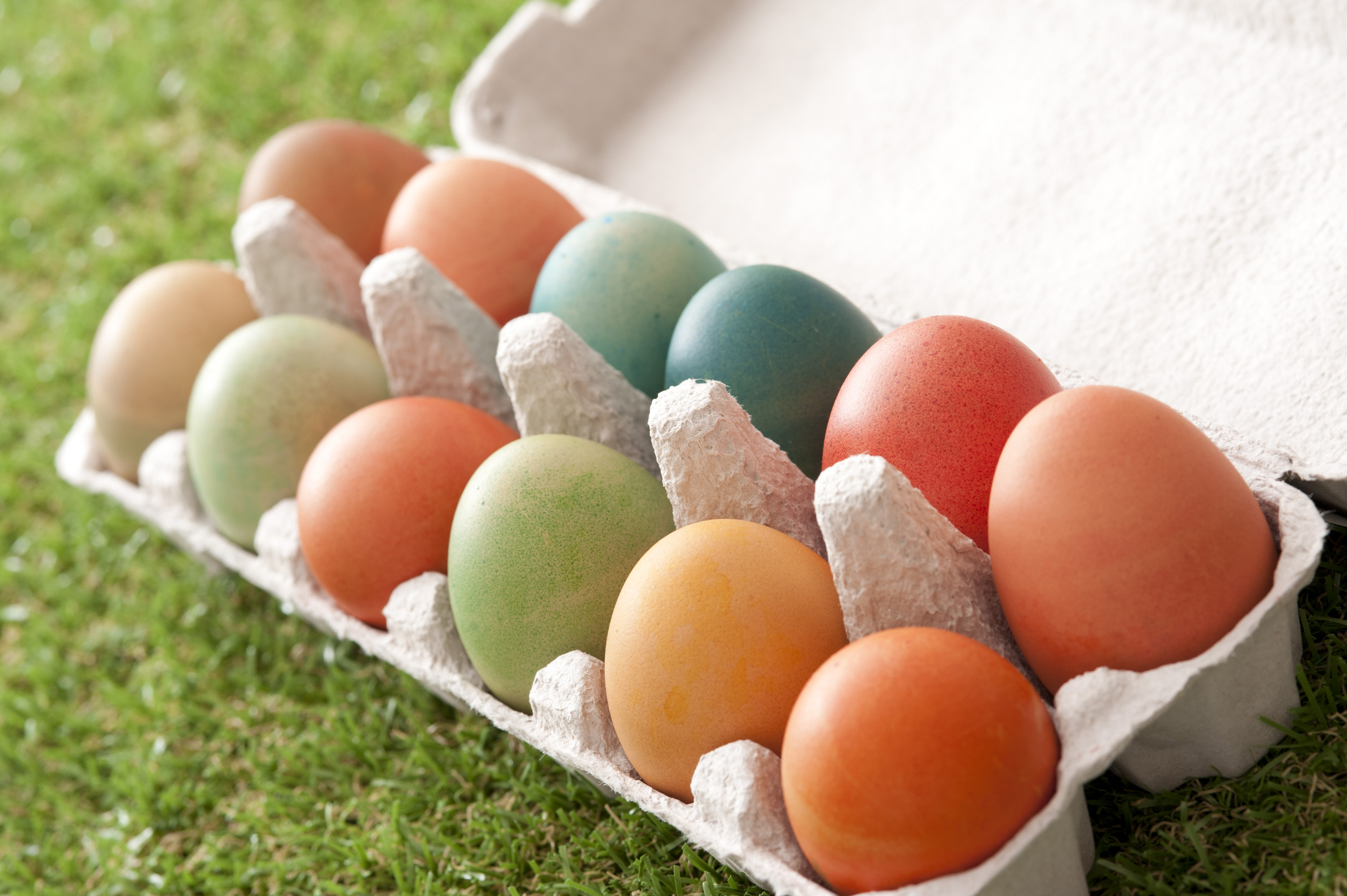 pace_eggs.jpg - Various colored Easter Eggs in open paper carton over green grass for holiday theme