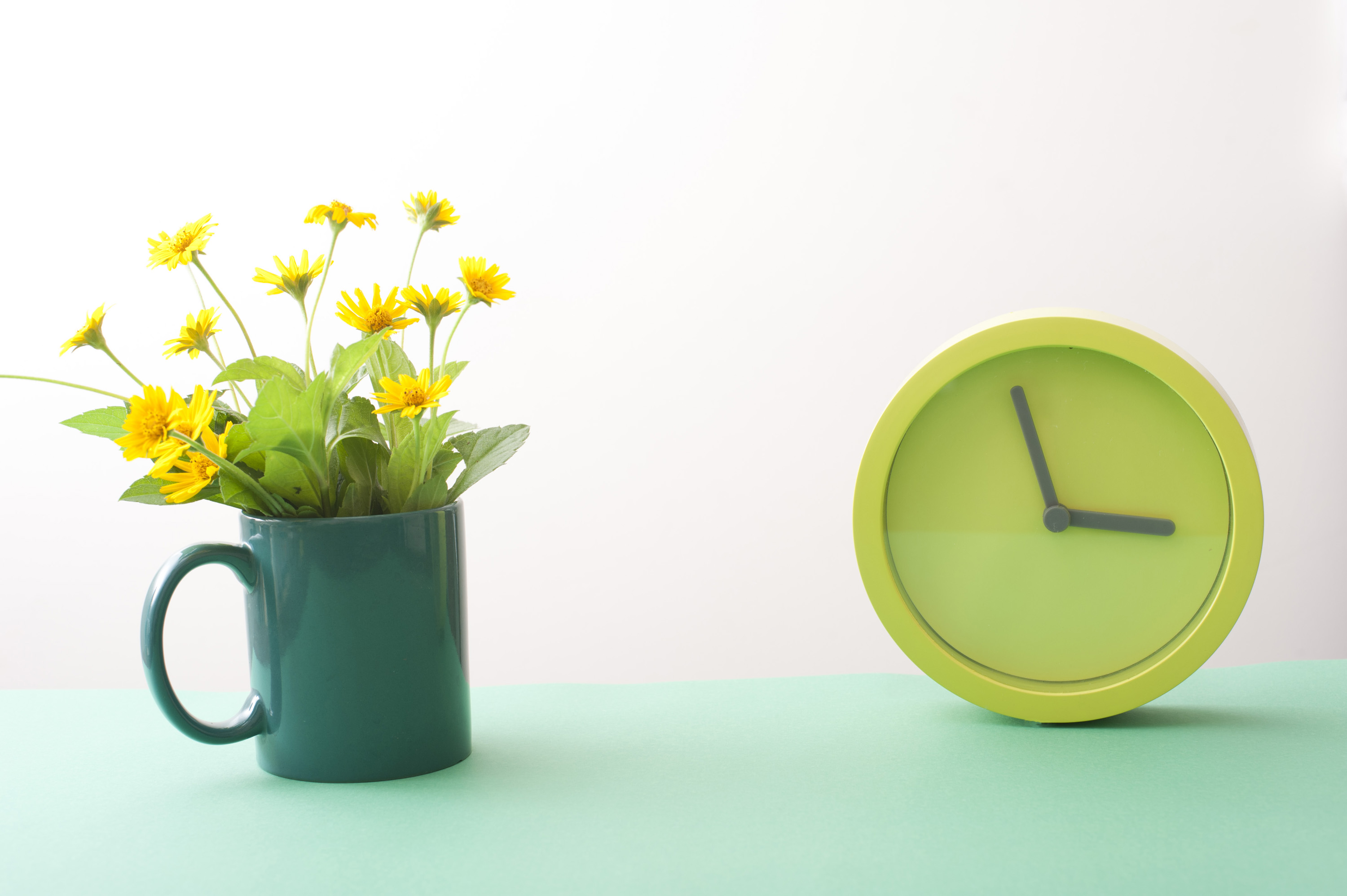 easter_time_background.jpg - Yellow spring flowers in green mug and simple round green watch on turquoise surface over white background. Easter time concept