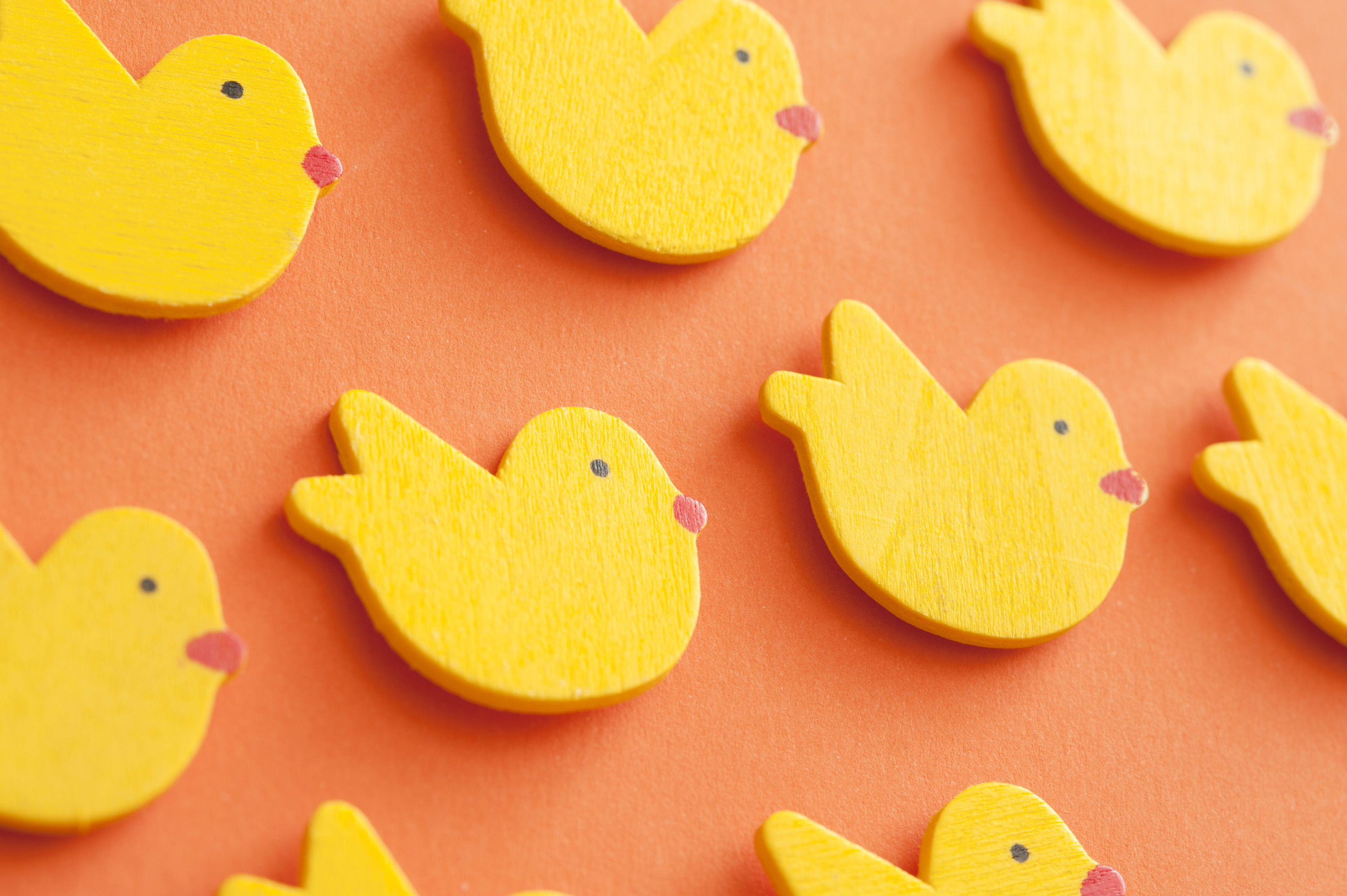 easter_duck_backdrop.jpg - Bright yellow Easter chick background on orange with colorful little chickens scattered randomly in an angled view