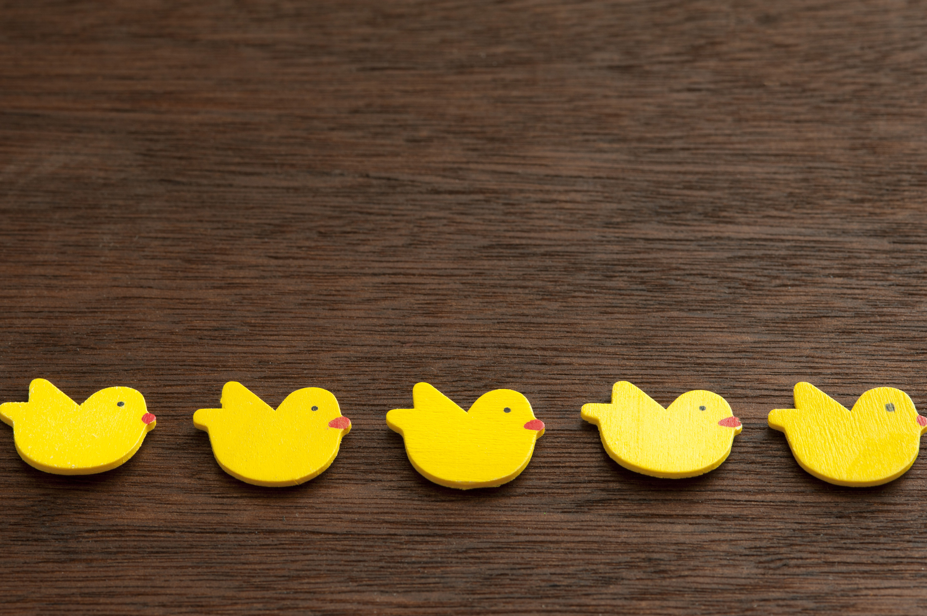 line_of_chickens.jpg - Top view of line of yellow decorative easter chicks on brown wooden surface. Copy space